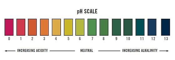 Acid scale for succulents